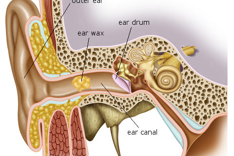 تامین دستگاه ساکشن جرم گوش